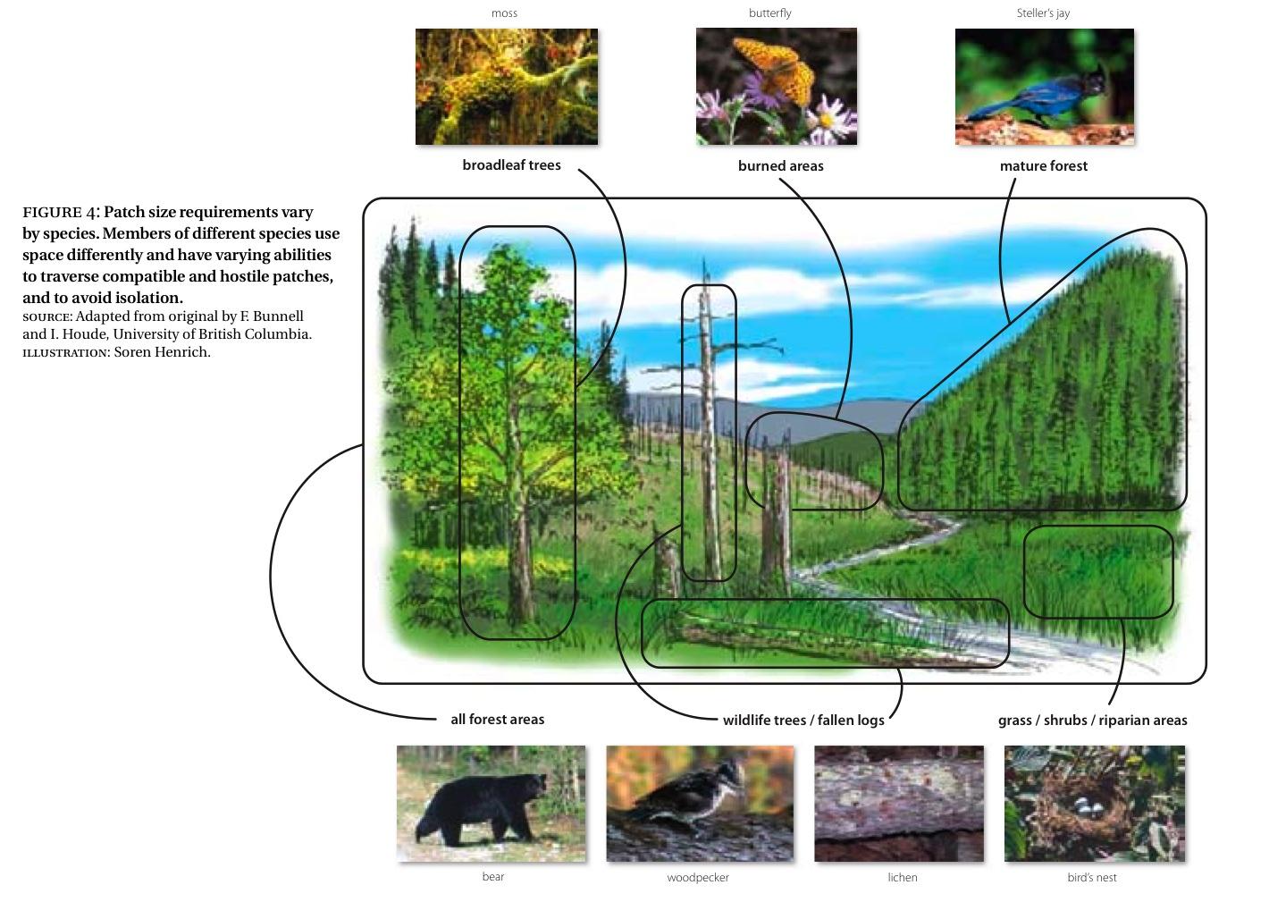 Taking Nature's Pulse: Section 1: Primer on Biodiversity ...